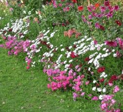 Καιρός για νέα φυτά