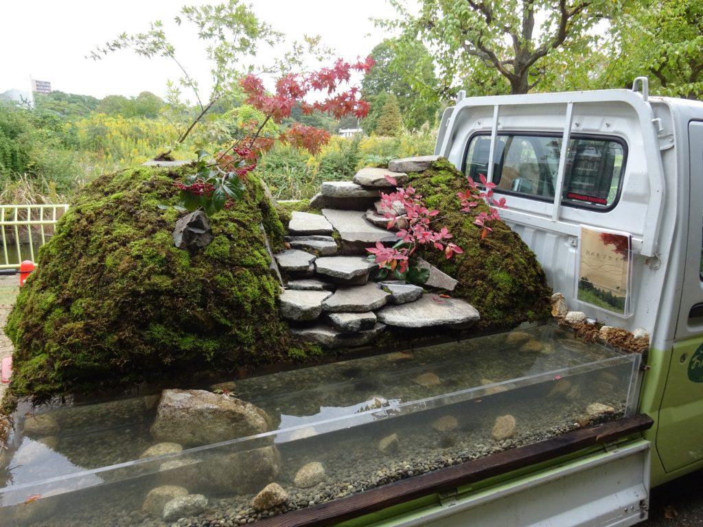 Κήποι σε καρότσες φορτηγών 5